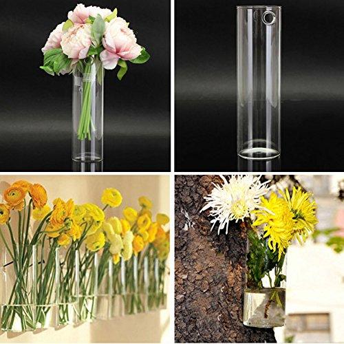 Bluelover Idroponici piante fiori vetro vaso casa partito Decor a parete