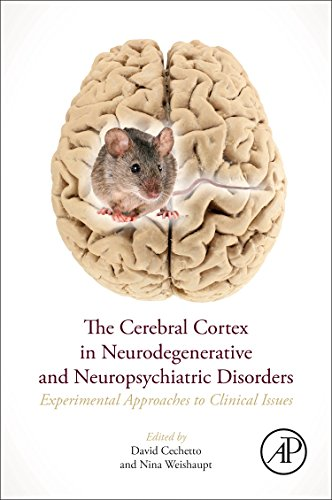 The Cerebral Cortex in Neurodegenerative and Neuropsychiatric Disorders: Experimental Approaches to Clinical Issues