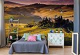 Wallsticker Warehouse Toskana Vlies Fototapete Fotomural - Wandbild - Tapete - 211cm x 91cm / 1 Teilig - Gedrückt auf 130gsm Vlies - 169VET - Wiesen & Landschaft