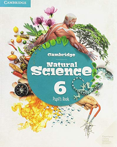 Cambridge Natural Science Level 6 Pupil's Book Natural