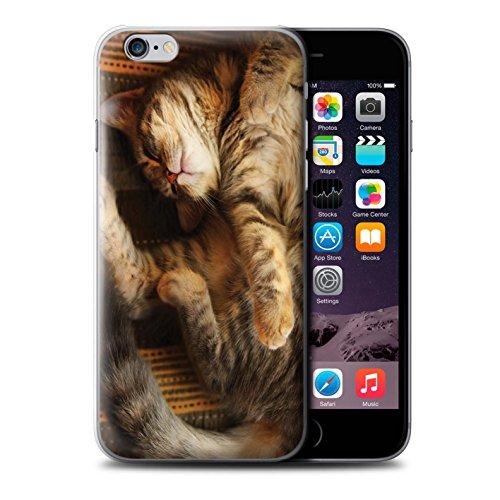 Officiel Elena Dudina Coque / Etui pour Apple iPhone 6 / Cleopatra/Serpent Doré Design / Les Animaux Collection Endormi/Tigré Chat