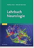 Lehrbuch Neurologie