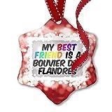 NEONBLOND Adorno navideño My Best Friend a Bouvier Des Flandres Dog de Bélgica, Color Rojo