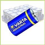 VARTA Industrial 4020 Mono D/LR20 lose