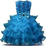 NNJXD Mädchen Kleid Kinder Rüschen Spitze Party Brautkleider Größe(100) 2-3 Jahre Blumen Blau