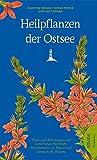 Heilpflanzen der Ostsee -
