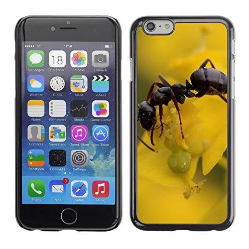 case-carcasa-case-funda-case-la-v00004047-legno-waldameise-formica-apple-iphone-6-6s-6g-47