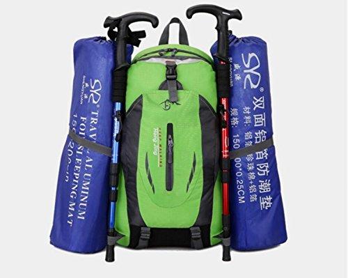 LQABW Alpinismo Coppia Impermeabile Borsa A Spalla Esterna Camminare Esercizio Escursionismo Ridotto Breathabl Zaino 40L,Black Black