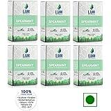 Lass Naturals Spearmint Premium Handmade Bathing Bar - 125 gm / 4.40 oz (Pack of 6)