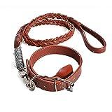 OOFWY Große und mittlere - Sized Haustier-Hundeleine Halsband + Zugseil , red brown