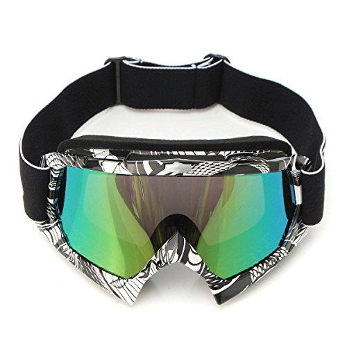 AUDEW Motorrad Goggle