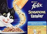 Felix Sensations Crunchy in Gelee Katzennassfutter (mit Crunchy Knusperstückchen Geschmacksvielfalt aus dem Wasser),10x100 g Portionsbeutel +1x40 g Knusperstückchen 6er Pack (6 x10 x 100 g +6 x 40 g)