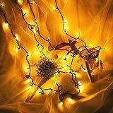 MMLsure® 100 LED Plug-in Lichterkette bunt,Schwarze Kunststofflinie Fenster Vorhang Kupfer Lampe Party Decor mit Perlen,Innen und Außen Deko Glühbirne für Hochzeit, Party, Weihnachtsbaum (YE)