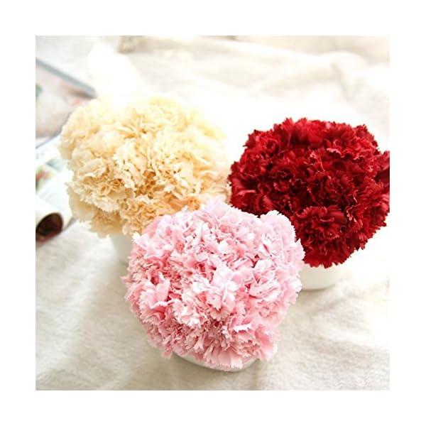 Outflower 6 PCS Artificial Falso Clavel de Flores Decoraciones para el Hogar Flor de la Boda Regalo Creativo del día de…