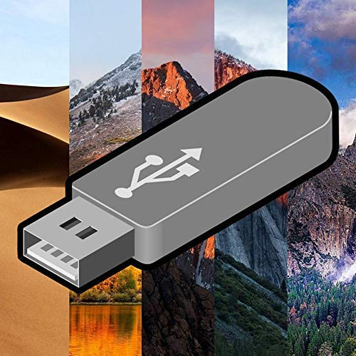 Mojave 10.14, High Sierra 10.13, Sierra 10.12, El Capitan 10.11 & Yosemite 10.10 OS X 5 in 1 USB avviabile