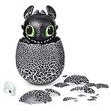 Dreamworks Dragons 6046183 - Ohnezahn Babydrachen Ei, Hatching Dragon, Ohnezahn zum Ausbrüten, Soundeffekte, Kopf- und Bauchsensoren, interaktiv