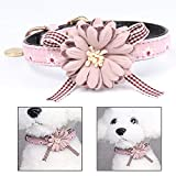 Xrten Blumen Hundehalsband,Einstellbare Deko Hundehalsband Halsband(Rosa)