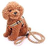 VICTORIE Hundegeschirr Leine Set Reflektierende Sicherheit vestellbar für kleine mittlere große Hunde Spaziergang Training(Orange,1.5*120cm)