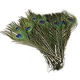 50pcs romote hermoso pavo real plumas de cola natural Sobre 10-12inch para la decoración de bricolaje