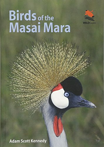Birds of the Masai Mara (WILDGuides) by Adam Scott Kennedy (2012-11-04)