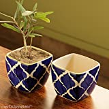 ExclusiveLane Moroccan Roots Ceramic Pot with Planters (9 cm x 9 cm x 8 cm, Blue, White and Yellow, Set of 2)