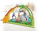 Mattel Fisher-Price K4562 Rainforest Erlebnisdecke Bild 8
