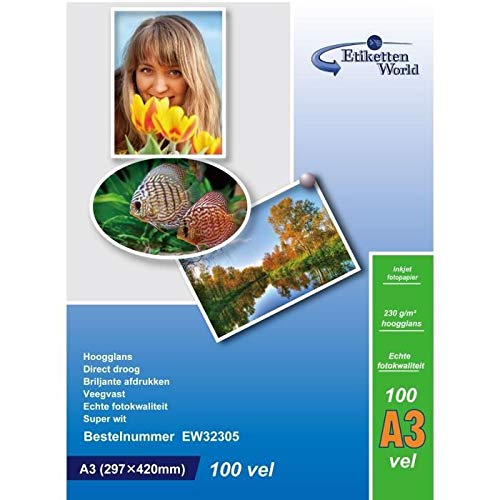 EtikettenWorld - 100 Feuilles Papier Photo A3 Premium Haute Brillance 260g