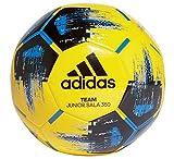 adidas Futsal Team JS 350