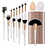 TTRWIN Pinceaux Maquillages Professionnels Kit de 12pcs Cosmétique Brush Beauté Maquillage Brosse. Kabuki Synthetic Face Blush Lip Shadow Base Eyeliner. Avec un élégant paquet en cuir doré