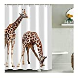 LOUMVE Polyester Giraffe Duschvorhang Anti Schimmel mit Duschvorhangringe Antibakteriell Wasserdicht Badewanne Duschvorhang 180 x 180 cm