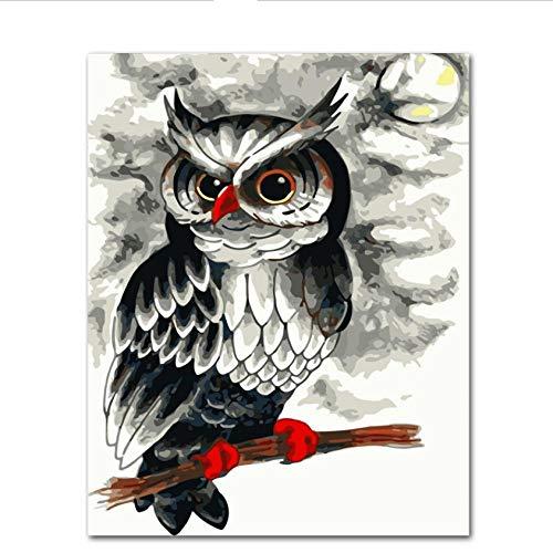Hyllbb Moonlight Owl Diy Malen Nach Zahlen Kits Malen Nach Zahlen Modern Wall Art Picture Gift-40 * 50Cm,With Frame -