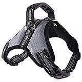 Treat Me 丨 Hundegeschirr Besonders Für Große Hunde von 17,5-64kg Hundeleinen Qualität Und Funktionalität Atmungsaktiv Powergeschirr Brustgeschirr Hundeschutz Grau L