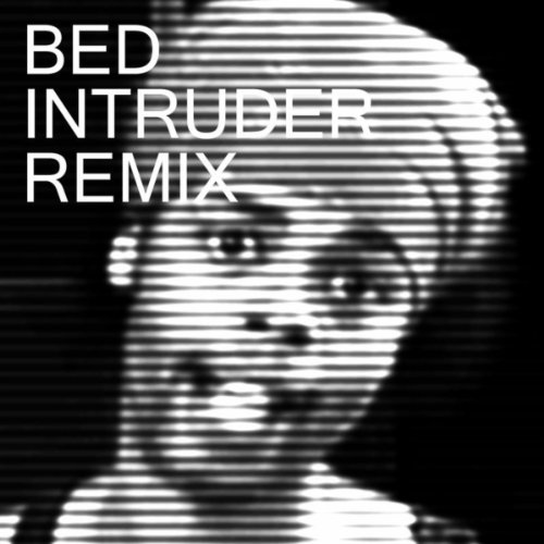 Bed Intruder Song (Pete Proto Remix)