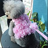 LLYWCM Pet Dog Flower Traction Vest Harness with Matching Leash Collar Set in Pink for Small Dog Breeds