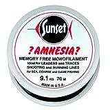 Jenzi Amnesia Zero-Twist 100m/ 25 lbs / 11,4 kg schwarz