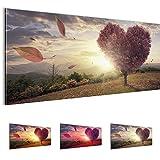 Bilder 100 x 40 cm - Herbst Bild - Vlies Leinwand - Kunstdrucke -Wandbild - XXL Format - mehrere Farben und Größen im Shop - Fertig Aufgespannt !!! 100% MADE IN GERMANY !!! - 605812c