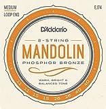 D'Addario EJ74 11 - 40 Medium Phosphor Bronze Mandolin String