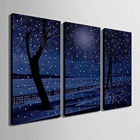 Modylee notte di neve vernice LED a fibre ottiche la cornice decorativa sala da pranzo soggiorno camera da letto , 30*60