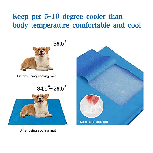 Zoom IMG-1 seekavan tappeto refrigerante per cani