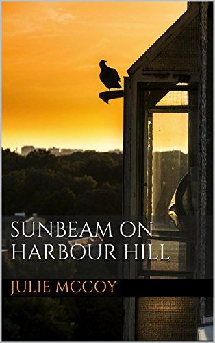 sunbeam-on-harbour-hill