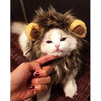 DaHanBL Pet Dog Cat Costume Lion Mane Hood for Halloween Dress 51c4BdwguhL