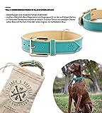 Jack & Russell Premium Leder Hunde Halsband Lilly - Leder Halsband Zwei Farben gesteppt - echtes Leder div. Farben Hudehalsband Lilly (M, Türkis/Beige)