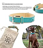 Jack & Russell Premium Leder Hunde Halsband Lilly - Leder Halsband Zwei Farben gesteppt - echtes Leder div. Farben Hudehalsband Lilly (L, Türkis/Beige)