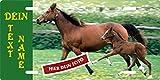 Stallschild Pferde-Schild eigenes Foto, Text selbst gestalten Boxenschild Stalltafel Blechschild Metallschild Türschild für innen und außen, 305x152mm