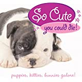 So Cute You Could Die!: Puppies, Kittens, Bunnies Galore!