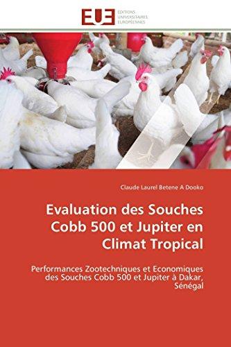 Evaluation des  Souches Cobb 500 et Jupiter en Climat Tropical: Performances Zootechniques et Economiques des Souches Cobb 500 et Jupiter à Dakar, Sénégal (Omn.Univ.Europ.) por Claude Laurel Betene A Dooko
