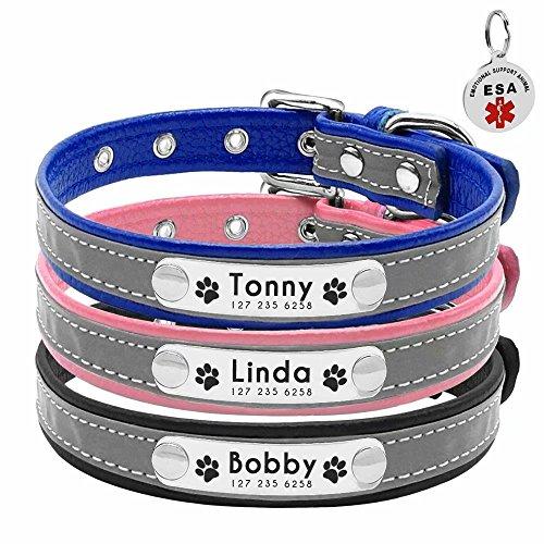Collar para perro Berry suave acolchado personalizado – grabado personalizado perro ID collares con placa de nombre – Collar reflectante para perro gato para perros pequeños y medianos – ESA ID TAG como regalo, negro, azul, rosa, XS, S, M