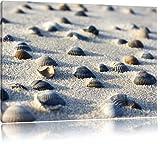 Muscheln im Sand, Format: 80x60 auf Leinwand, XXL riesige Bilder fertig gerahmt mit Keilrahmen, Kunstdruck auf Wandbild mit Rahmen, günstiger als Gemälde oder Ölbild, kein Poster oder Plakat