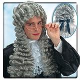 Carnival Toys 2726–Perruque Juges, gris