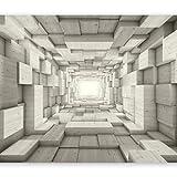 murando Fototapete 3D Effekt 400x280 cm Vlies Tapeten Wandtapete XXL Moderne Wanddeko Design Wand Dekoration Wohnzimmer Schlafzimmer Büro Flur Tunnel Holz Grau a-A-0125-a-c
